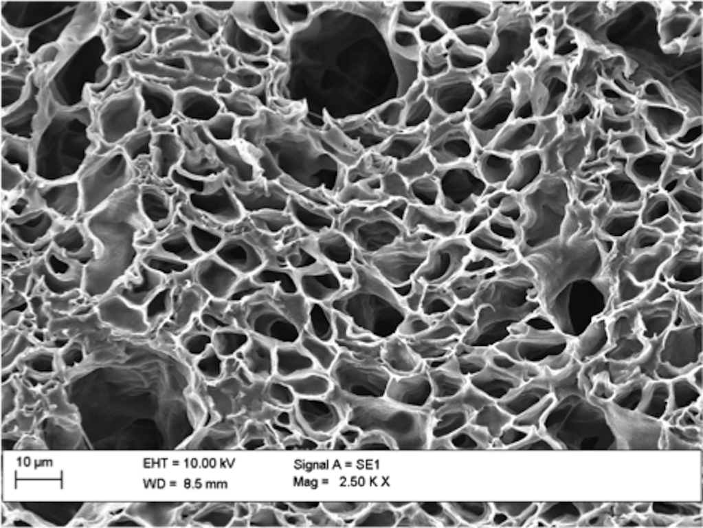 SEM imaging of hollow microfibres, fabricated using the coaxial electrospinning technique.